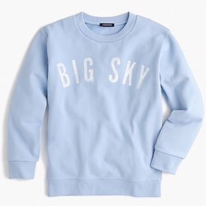 J. Crew Big Sky Blue Crewneck Sweatshirt Medium